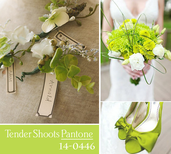 Colores para boda 2013 - Tender Shoots